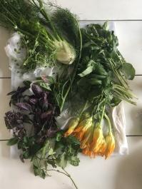 Herbs so Green